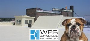 Watchdog Roof Repair