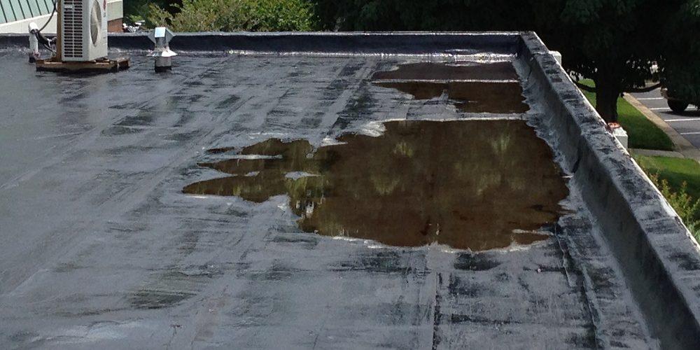 Flat Roof Repair/Restoration vs Total